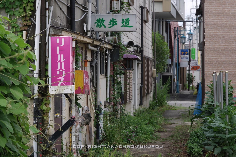 f:id:anachro-fukurou:20210704173124j:plain