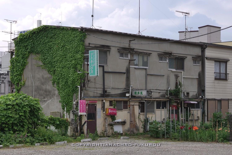 f:id:anachro-fukurou:20210704173133j:plain