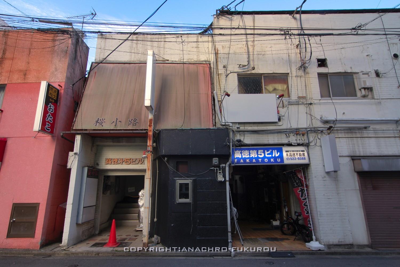 f:id:anachro-fukurou:20210710192634j:plain