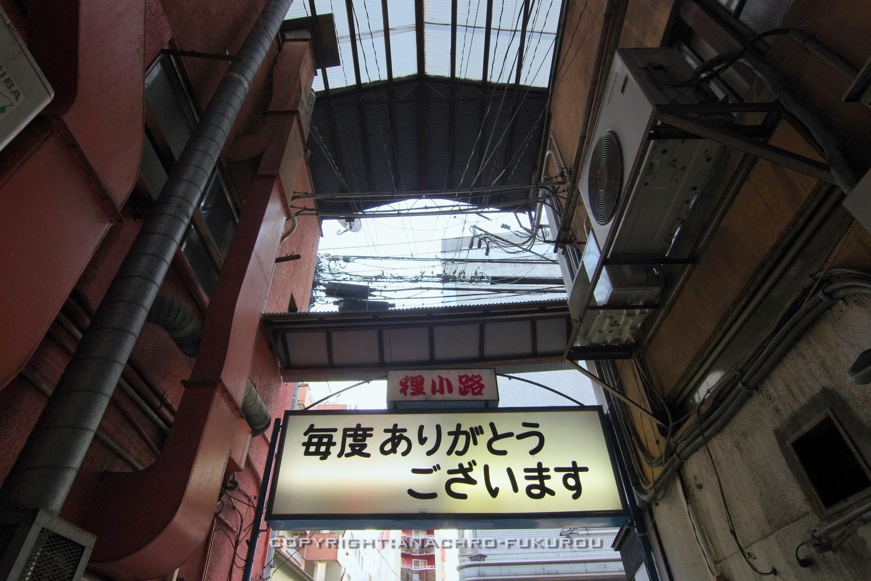f:id:anachro-fukurou:20210710215451j:plain