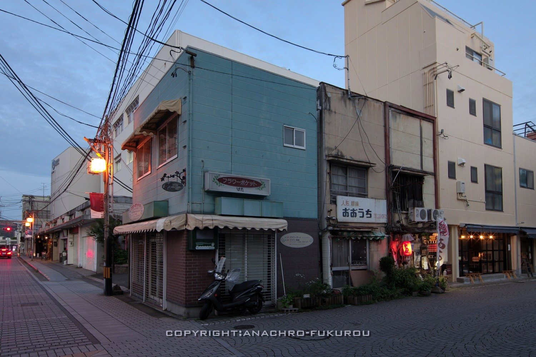 f:id:anachro-fukurou:20210710215506j:plain