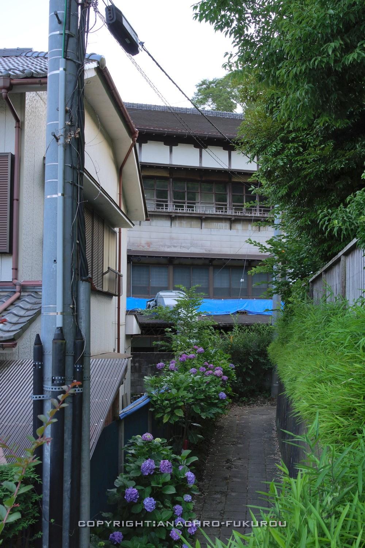 f:id:anachro-fukurou:20210729231659j:plain