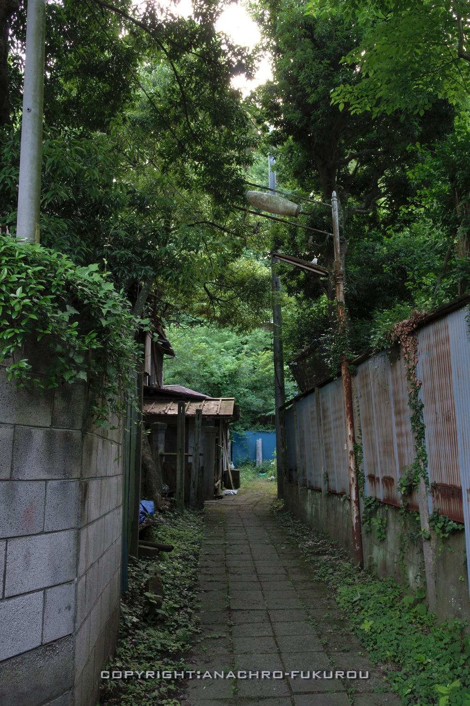 f:id:anachro-fukurou:20210729231705j:plain