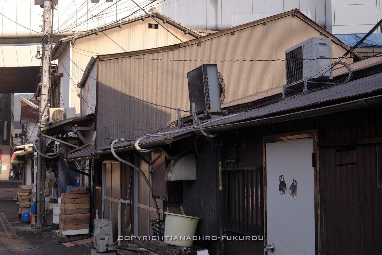 f:id:anachro-fukurou:20210915091947j:plain