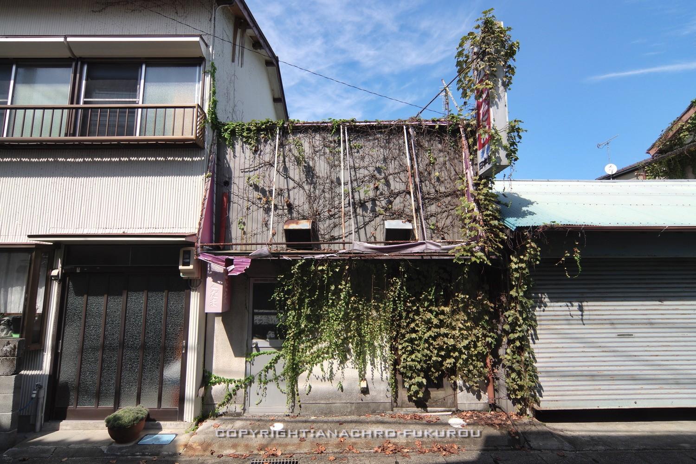 f:id:anachro-fukurou:20211011095123j:plain