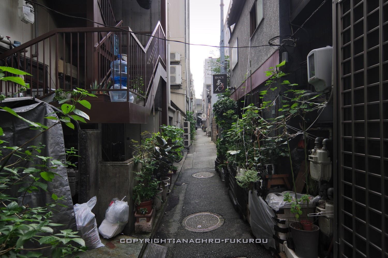 f:id:anachro-fukurou:20211015092402j:plain