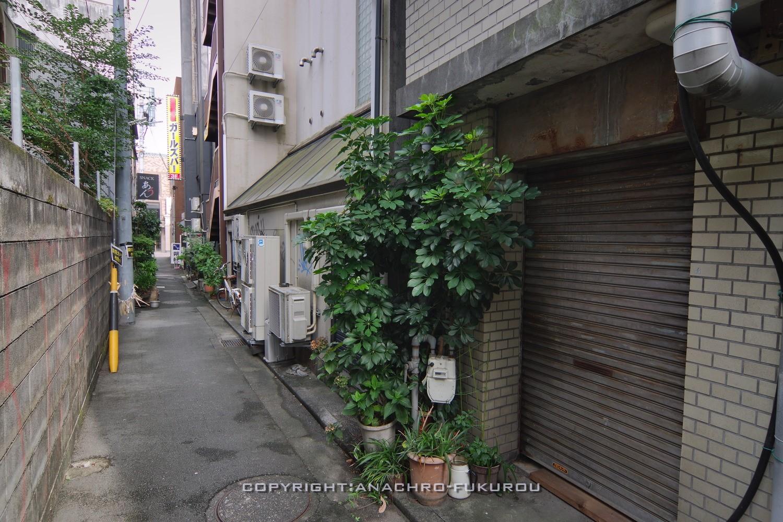 f:id:anachro-fukurou:20211015092410j:plain