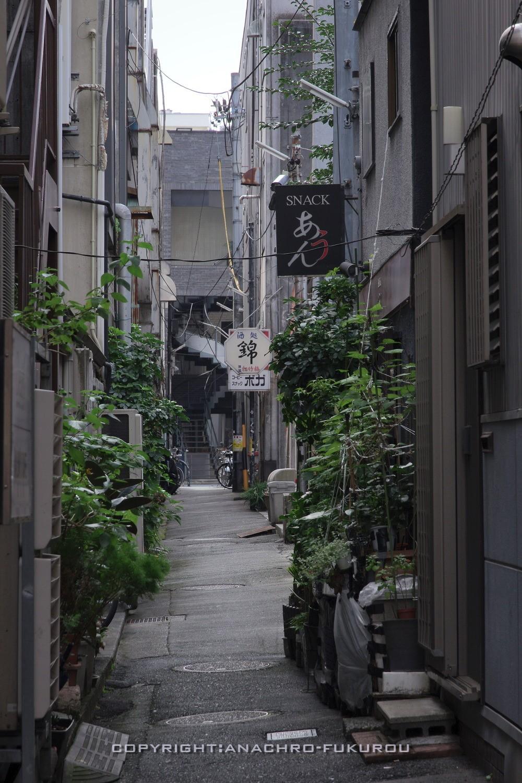 f:id:anachro-fukurou:20211015092534j:plain