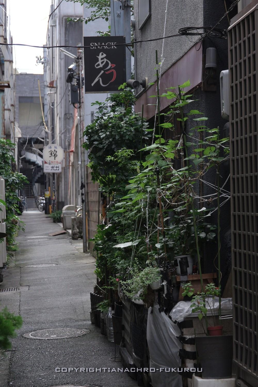 f:id:anachro-fukurou:20211015092537j:plain