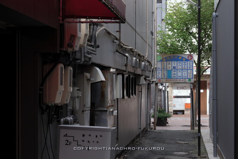 f:id:anachro-fukurou:20211015092635j:plain