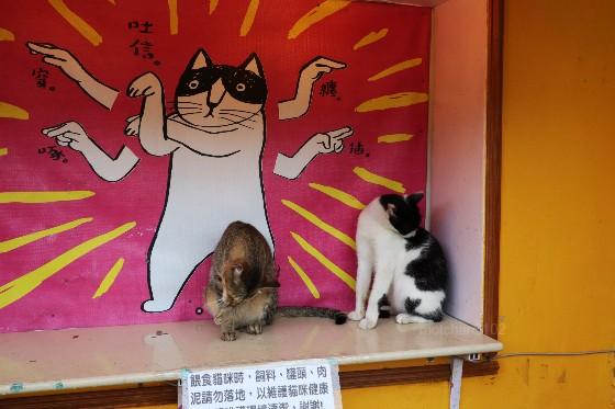 猴硐の猫たち