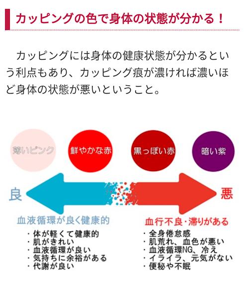 f:id:anatano-kameya-2014:20190217001415p:plain