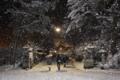 京都新聞写真コンテスト 雪の初詣