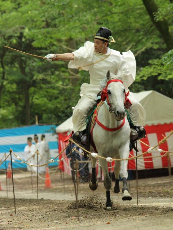 京都新聞写真コンテスト 疾走
