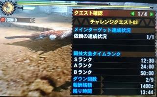 DSC_0394.JPG