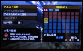 IMG_3242.jpg