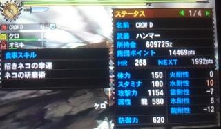 DSC_1046.JPG