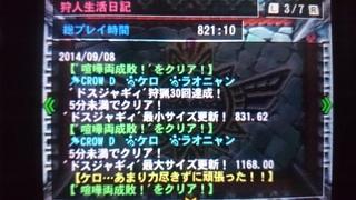 DSC_1344.JPG