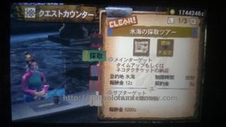 DSC_2127.JPG