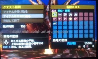 DSC_2602.JPG