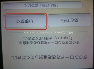 DSC_2833.JPG