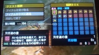 DSC_2909.JPG