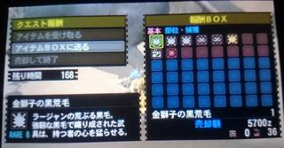 DSC_3374.JPG