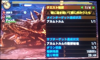 DSC_4007.JPG