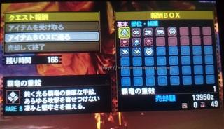 DSC_4010.JPG