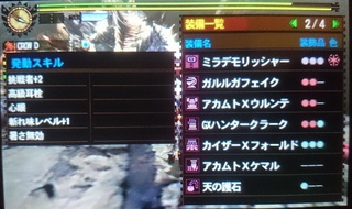 DSC_4050.JPG