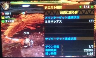 DSC_4109.JPG