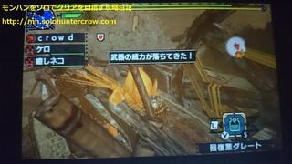 DSC_0300-2.JPG