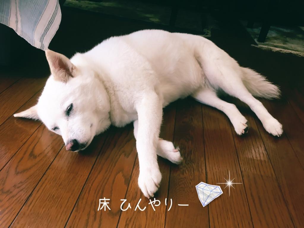 f:id:ancoro_chan:20160701132757j:plain