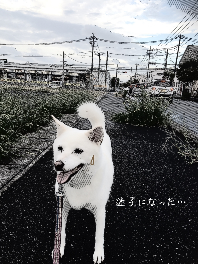 f:id:ancoro_chan:20160908171151j:plain