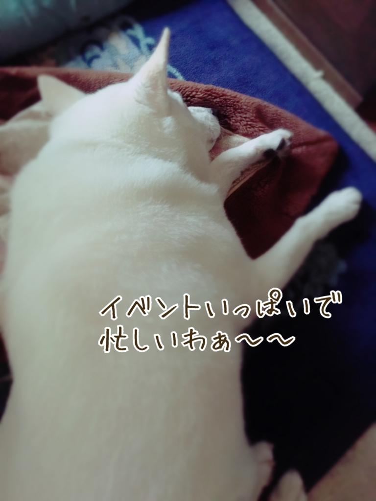 f:id:ancoro_chan:20161109105953j:plain