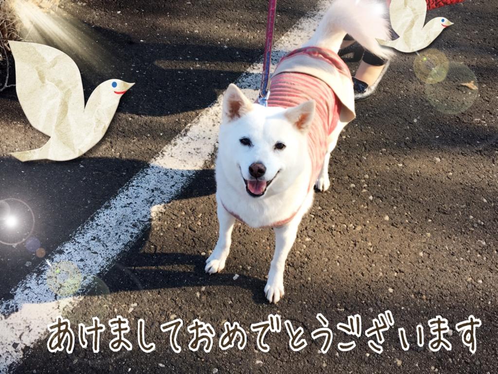 f:id:ancoro_chan:20170103170900j:plain