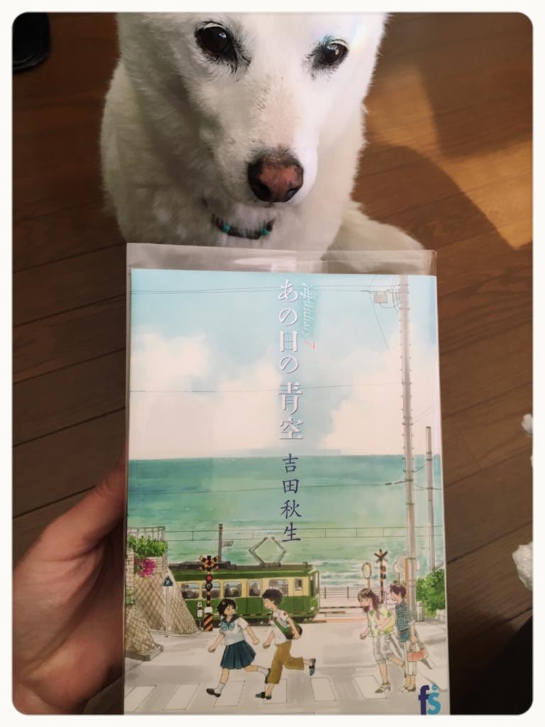 f:id:ancoro_chan:20170221133232j:plain