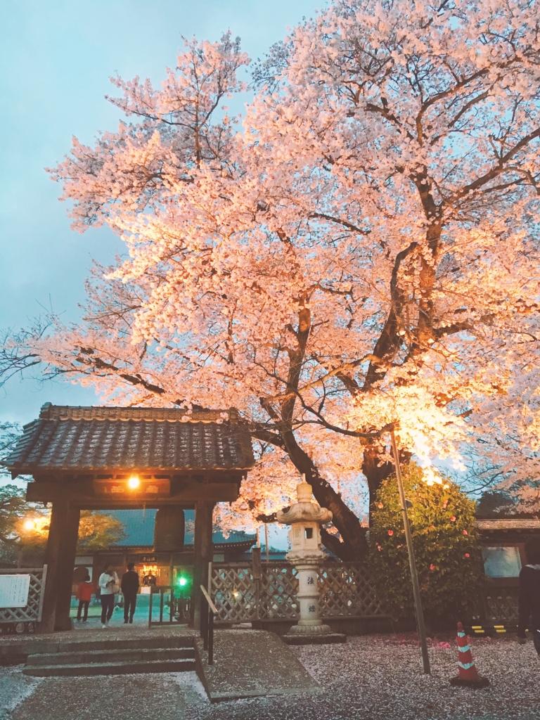 f:id:ancoro_chan:20170412085510j:plain