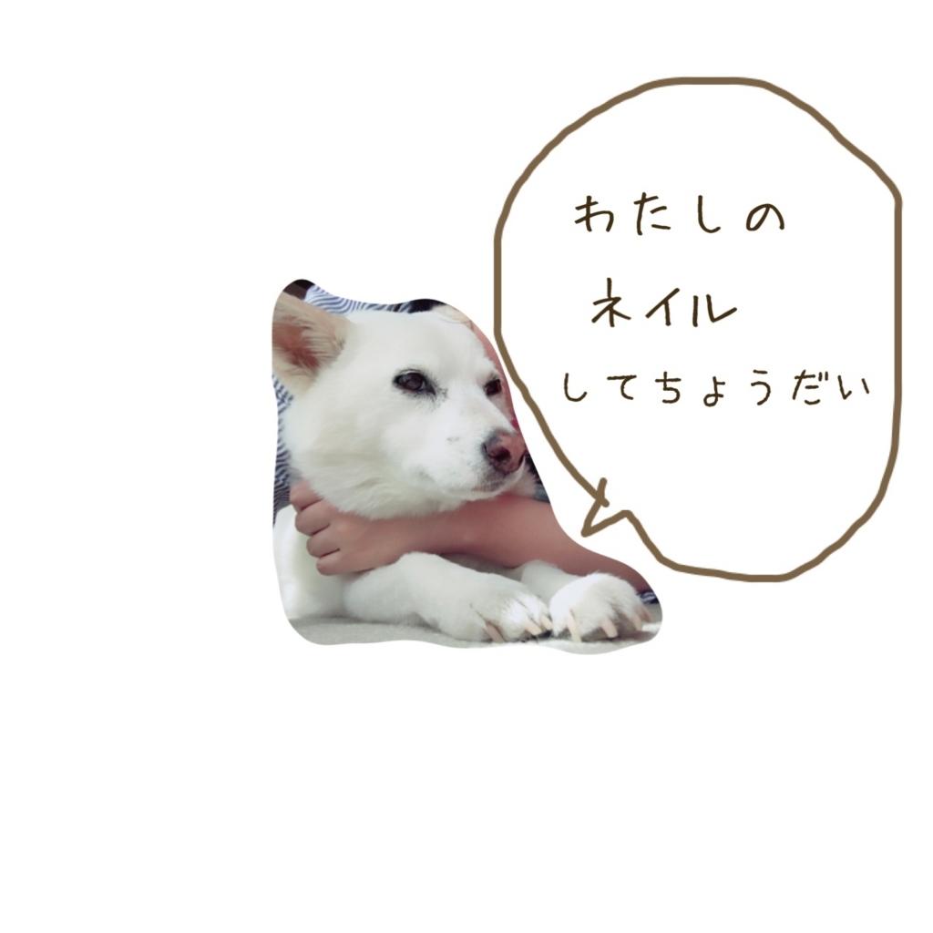 f:id:ancoro_chan:20170609232328j:plain