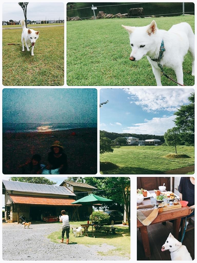 f:id:ancoro_chan:20170708223819j:plain