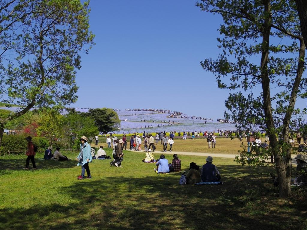 ひたち海浜公園2