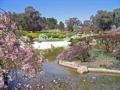オーストラリア カウラ日本庭園