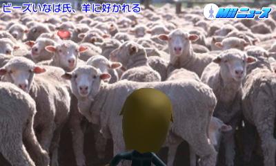 f:id:andomasakazu:20160612222633j:image