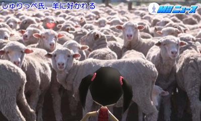 f:id:andomasakazu:20170521171521j:image
