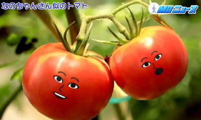 f:id:andomasakazu:20170827210451j:image