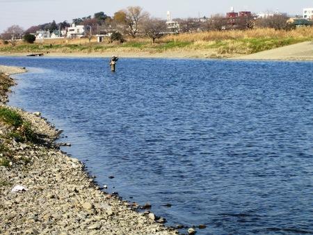 水辺の釣り人