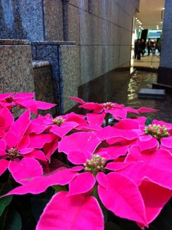 Yokohama Landmark Plaza. Season's decoration