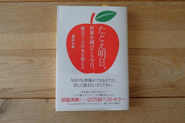 f:id:anemone-kaori:20170401220422j:image