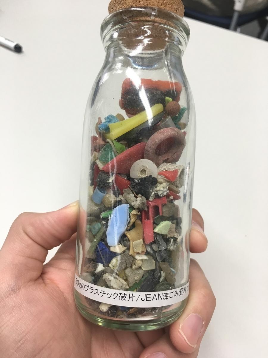 海鳥が飲み込んだプラスチック片