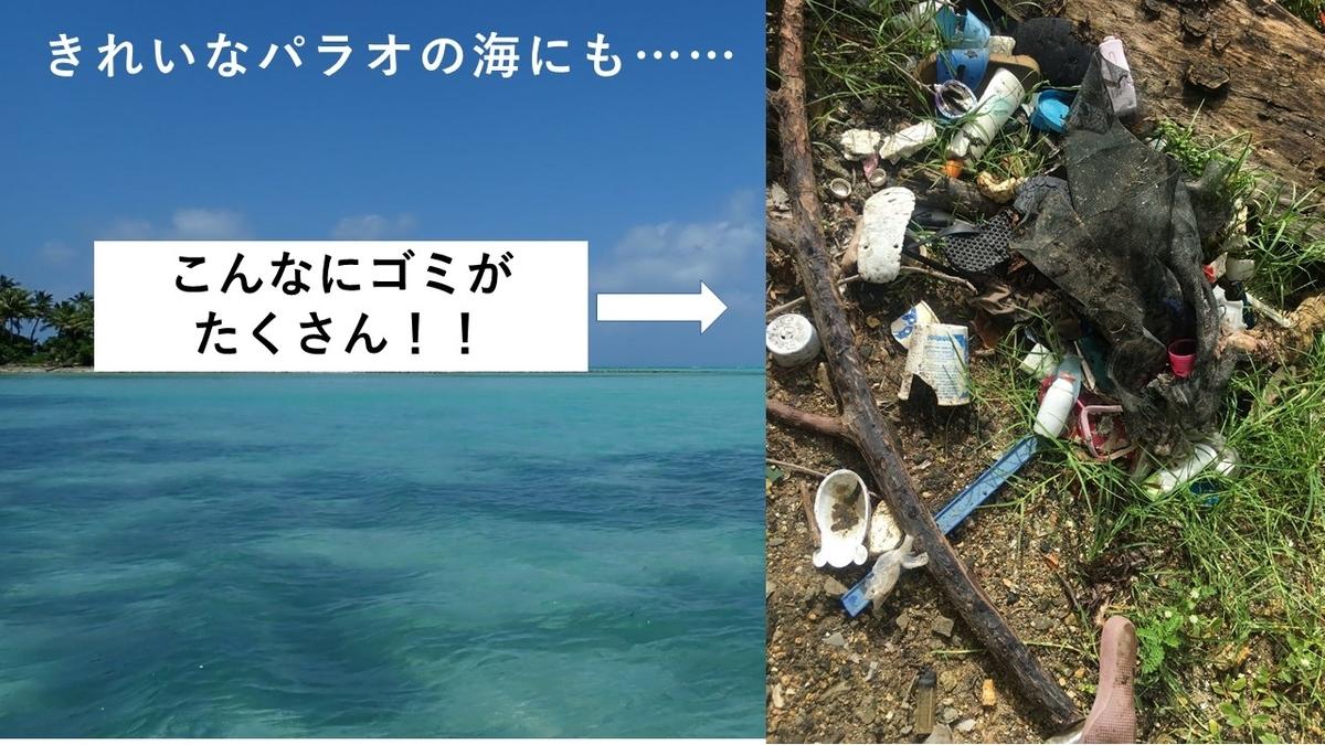 実際にパラオの海岸に流れ着いた漂着ゴミ